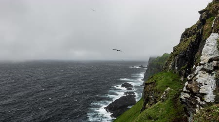 texto : Steep coastline time lapse on a misty day Vídeos