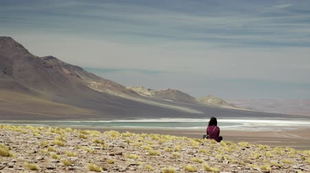 engrossed : Rear view of woman meditating in Atacama highlands Stock Footage