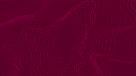 crimson : Bright purple abstract wavy pattern video animation