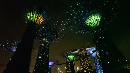 Gardens by the Bay timelapse. Gardens by the Bay is a nature park in the city centre of Singapore. Stok Video
