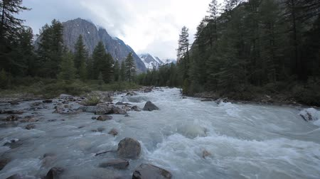 bubbling : mountain river Stock Footage
