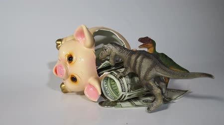 elesett : Two carnivorous dinosaurs T Rex and VelociRaptor killed a pig coin box and ate its insides capital, Finance in the pig year 2019. Allegory Stock mozgókép