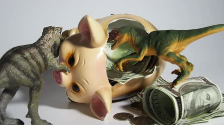 anlamı : Two carnivorous dinosaurs T Rex and VelociRaptor killed a pig coin box and ate its insides capital, Finance in the pig year 2019. Allegory Stok Video