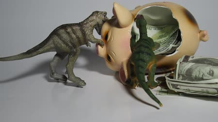 staging : Two carnivorous dinosaurs T Rex and VelociRaptor killed a pig coin box and ate its insides capital, Finance in the pig year 2019. Allegory Stock Footage