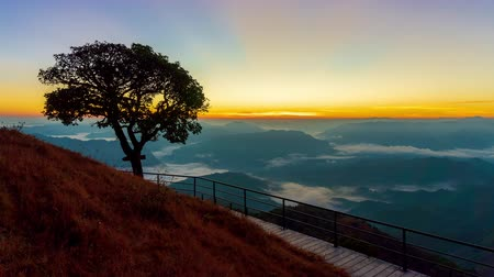 MAE HONG SON, THAILAND - DECEMBER 6, 2018 : Time lapse Sunrise in the mountains at the view point. Single large trees and grass fields and walkways made of steel.