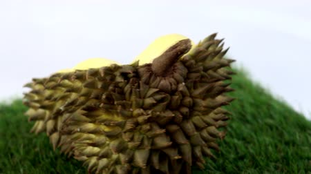 Vdo clip of Durian fruit Famous fruits from Thailand Wideo