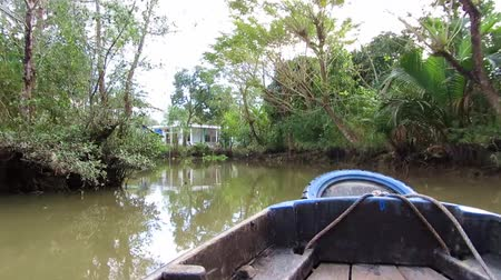 kano : Jungle Mekong delta, Vietnam, view from a moving boat Stok Video