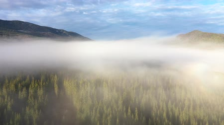 Румыния : Flying above clouds. Aerial drone 4k movie of sunrise, misty morning and forest in the mountains