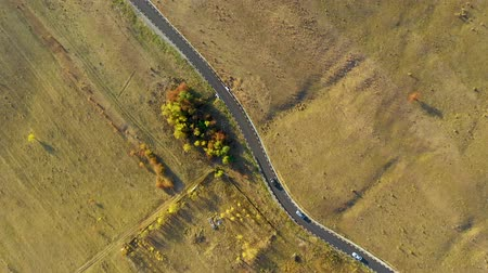 transilvânia : Aerial drone 4k video of winding asphalt road and moving cars at autumn