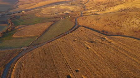 Трансильвания : Aerial 4k agricultural landscape. Plantation field ready for harvest. Above view from a drone