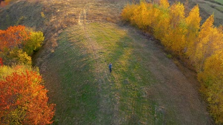 csodálkozó : Aerial UHD 4k point of view of a man relaxing in the outdoors at autumn. Drone flying in circle to capture the subject