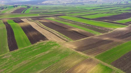 Aerial 4k drone view of agricultural fields of crops plowed and prepared for planting in the spring Archivo de Video