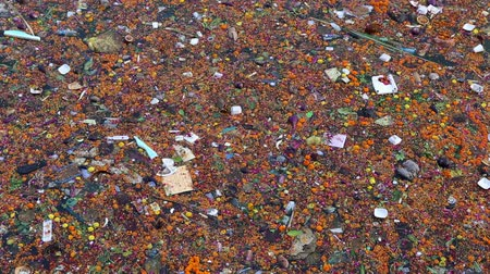 The Ganges River full of garbage after the pilgrims offerings.