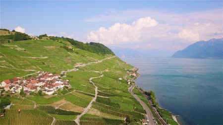 viticultura : 4K Aerial footage of vineyards in Lavaux Terraces near Lausanne in Switzerland - UHD Stock Footage