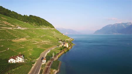 montreux : 4K Aerial footage of vineyards in Lavaux Terraces near Lausanne in Switzerland - UHD Stock Footage