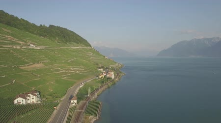 viticultura : 4K Ungraded Aerial footage of Vineyard fields in Lavaux Terraces near Lausanne in Switzerland - UHD