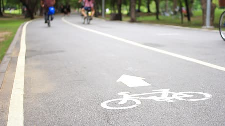 аллея : Bicycle lane road in the park.