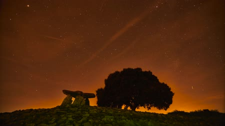 euskadi : Dolmen and tree with stars. timelapse Stock Footage