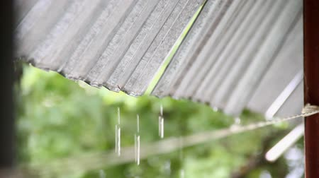 Raindrops dripping from the metal roof