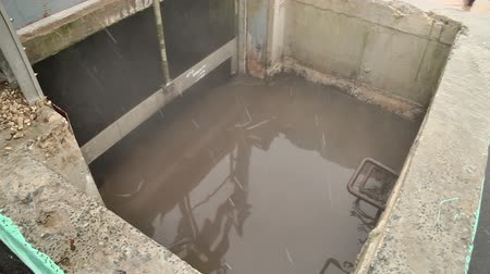 bionomics : Wastewater treatment in wastewater treatment plants