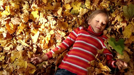 луг : Girl lying on the yellow leaves and holding a green leaf