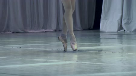 balerína : Slow Motion at a rate of 240 fps. Ballerina shows classic ballet pas Dostupné videozáznamy
