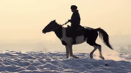 yırtıcı hayvan : A man on a horse galloping on a snowy field on a background of foggy sky illuminated by the sun. Slow Motion at a rate of 240 fps