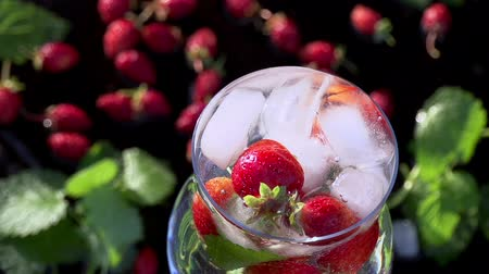 ruch : A glass of clean water, strawberries and mint leaves falling ice cubes. Slow Motion at a rate of 240 fps Wideo