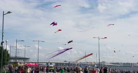 Kite Over the City Beach. A large number of Kites over the City Beach. Filmed at a speed of 120fps Stock mozgókép