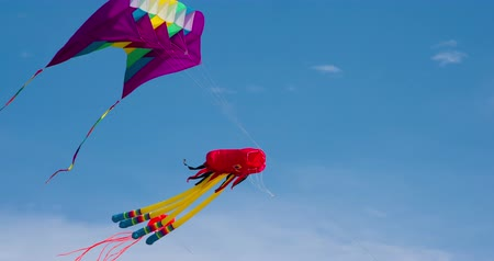 soar : Bright Air Kites of Various Forms. Large and complicated kites catch the wind. Filmed at a speed of 120fps Stock Footage