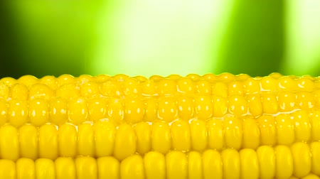 kernel : Salt Drops on Hot Corn. The grains of salt are slowly falling on the hot corn greased with butter