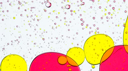 modification : Physical Processes in the Substance. Bright colored bubbles walking around the white background and their size and shape