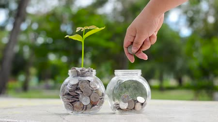 bitki : hand Put money Bottle Banknotes tree Image of bank note with plant growing on top for business green natural background money saving and investment financial concept