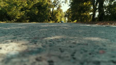 A POV shot of a car going down a rural road lined with trees