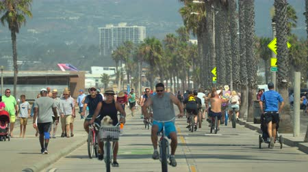 sierpien : Crowded Santa Monica walkway, boardwalk with palm trees and cyclist - August 2017: Santa Monica beach, Los Angeles California, US