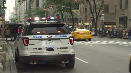 ave : Flashing police car in 5th avenue - August 2017: Manhattan, New York City, NY, US Stock Footage