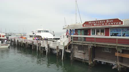 túmulo : Old Fishermans Wharf, cityscape - August 2017: Monterey, California, US Stock Footage