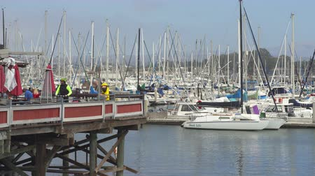 veleiro : Lot of boats in port of Monterey Bay. Crowded port scene - August 2017: Monterey, California, US Stock Footage