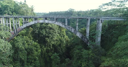 amazonka : Flying over an rainforest canyon and bridge. Aerial view of jungle Wideo