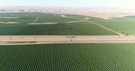 winogrona : Aerial shot of California vineyard and dry pasture. Green and barren, road