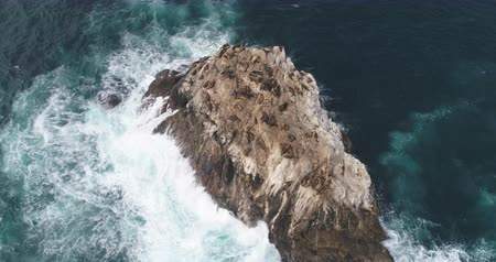 cinematic : Aerial view of ocean cliff with sea lions - waves washing up on a rock, Pacific Ocean