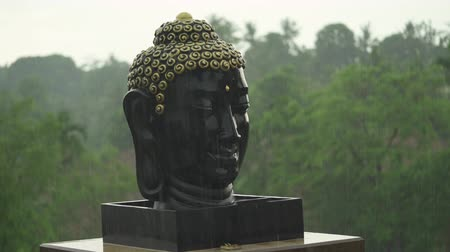 monção : Buddha face in the rain, Buddha head sculpture.