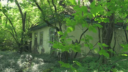 pripyat : Ruined abandoned home in a village near to Pripyat. Chernobyl nuclear disaster. Slider shot 30km Chernobyl, exclusion zone
