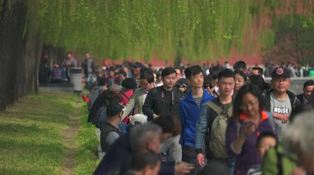 peking : Crowded street in Beijing, China. Crowd of people - March 2017: Beijing, China