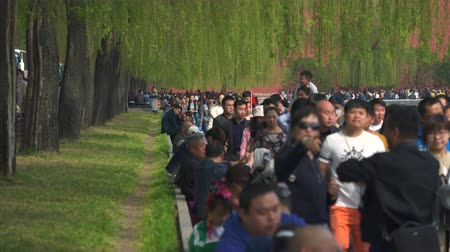 peking : Crowded street in Beijing, Forbidden City. Crowd of pedestrians - March 2017: Beijing, China Dostupné videozáznamy