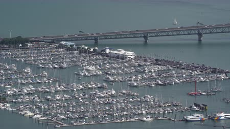 parkoló : Lot of sailing boats in port of Auckland, New Zealand