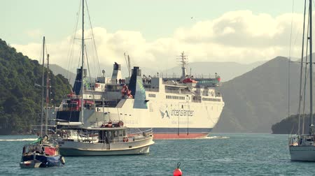yeni zelanda : New Zealand, port of Picton. Landscape with ferry, mountains and boats - March 2017: Picton, New Zeland Stok Video