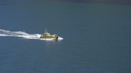 kíséret : Pilot boat cruising at sea in New Zealand