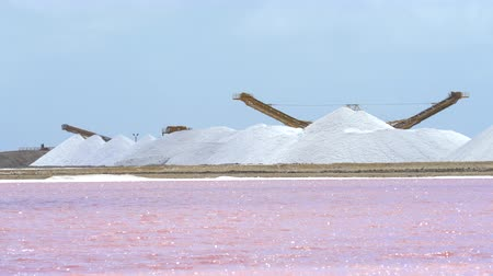 coletando : Pink waters of the lake, salt pond - Caribbean, Bonaire
