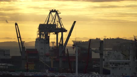 yeni zelanda : Industrial port cranes silhouette at sunset. Auckland, New Zealand - March 2017: Auckland, New Zeland